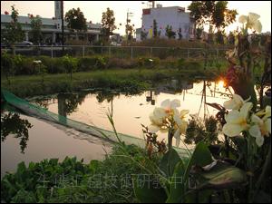 台南市仁德區二行社區人工濕地系統,每日可處理50-80CMD的社區生活污水,並且成為社區公園。(因地主收回而移除)