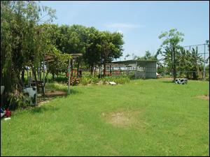 雨水回收再利用系統的收集降雨逕流的場址(八老爺牧場)