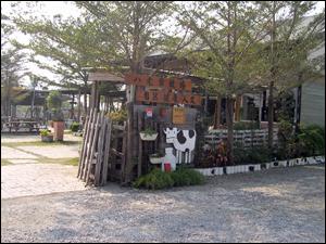 台南縣柳營鄉八老爺牧場