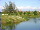 校園污水處理與綠校園景觀美化的生態技術