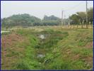 水庫污染源削減的生態處理技術