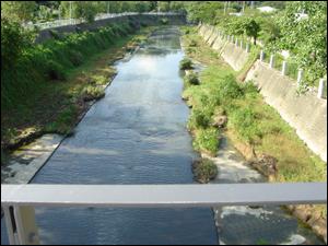台南市竹溪在槽式人工濕地研究計畫(環保署補助研究計畫)-場址設置前