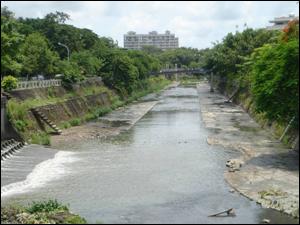 台南市竹溪在槽式人工濕地研究計畫(環保署補助研究計畫,因民眾認為會孳生蚊蠅而移除)-場址拆除後。