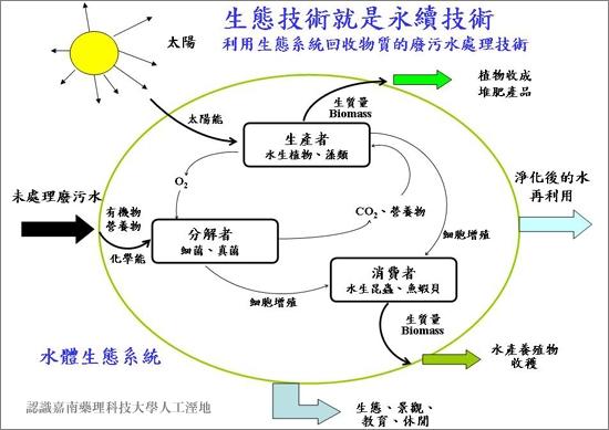 人工濕地的物質資源循環圖