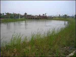 台南市七股區十分社區於進行土地重劃時,規劃了一部分的綠地作為社區民眾休憩使用,其中一部分的綠地規劃為社區自然生態淨水系統,使污水處理系統融入公園裡,成為社區自然生態環境的一部分。