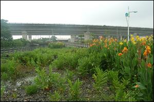彰化縣員林市大饒社區於進行農村土地重劃時,就把留了部分的土地規劃化為公園,一部分的公園甚至規劃為社區生態自然淨水園區,處理一部分的社區污水。